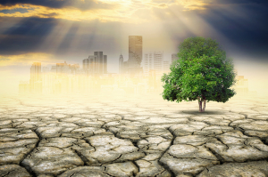 International experts discuss how development towards reaching the SDGs may enhance societal resilience against climates extremes. (Photo: Nirut Sangkeaw- stock.adobe.com)