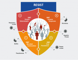 The Cluster of Excellence RESIST focuses its research inter alia on host factors determining the severity of bacterial and viral infections. (Photo: Cluster of Excellence RESIST, Hannover Medical School)