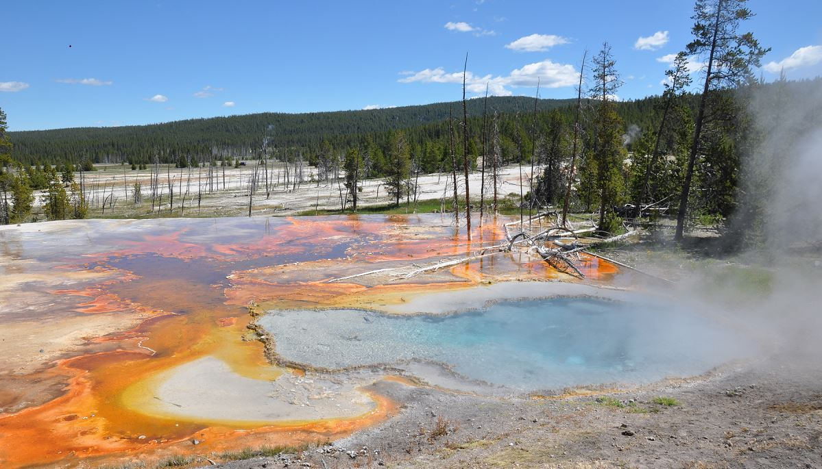 Geothermalquelle im Yellowstone Nationalpark